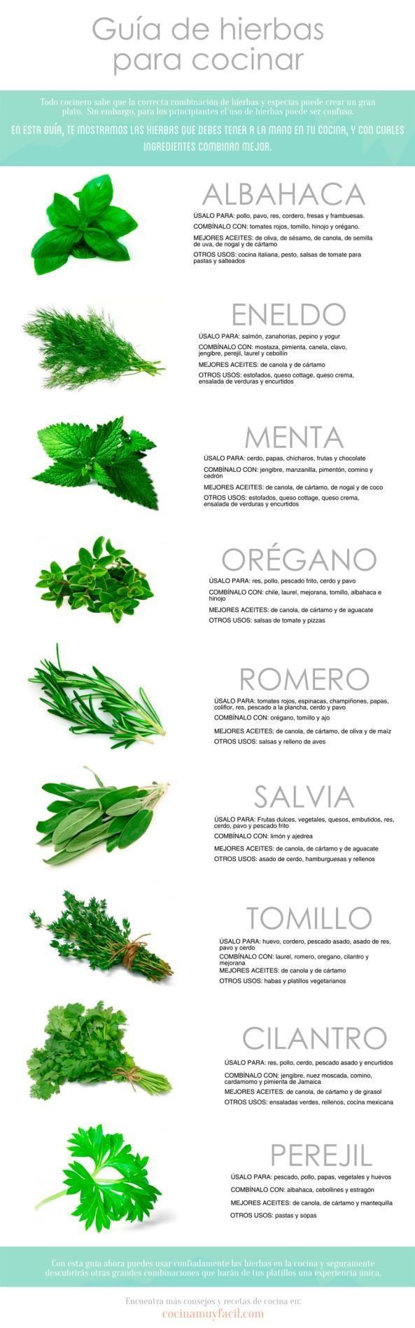 infografia-hierbas-cocinar_mini